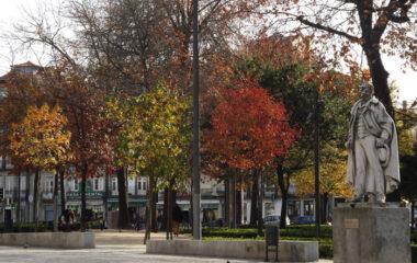 Outono-porto